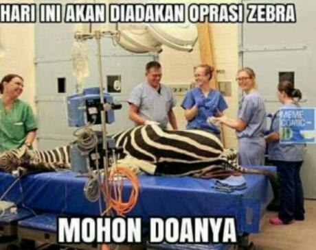 Operasi Zebra beneran nih? 😂